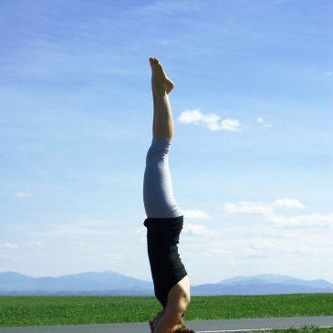 Building Strength & Stability for Handstands | Ashtanga Yoga